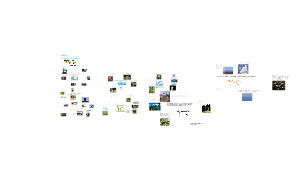 Copy of Biomes