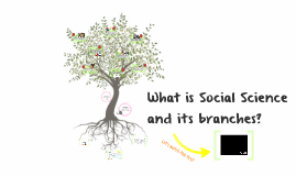 What is Social Science and its branches?