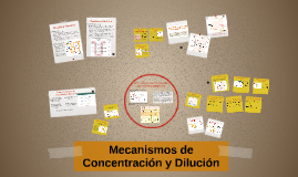 Mecanismos de Concentración y Dilución