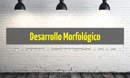 CAMBIOS MORFOLOGICOS EN ADOLESCENTES