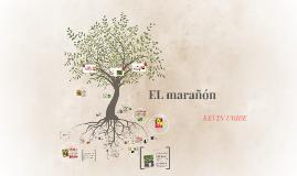 Copy of EL MARAÑON