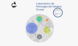 Laboratorio de Histología del Sistema Ocular