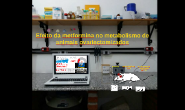 6 Efeito da metformina no metabolismo de animais ovariectomiza