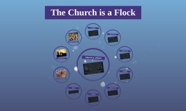 The Church is a Flock