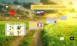 Copy of LOS NÚMEROS DECIMALES