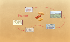 Peanut Project