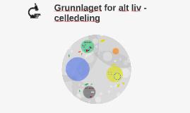 Grunnlaget for alt liv - celledeling