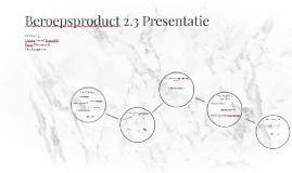 Beroepsproduct 2.3 Presentatie
