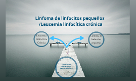 LLC L linfo pequeños