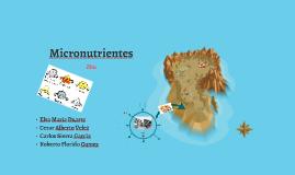 Copy of Micronutrientes