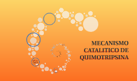Copy of Mecanismo Catalítico de Quimotripsina