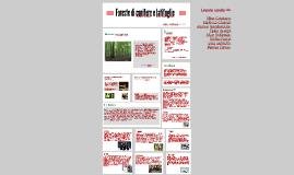 Foreste conifere e latifoglie