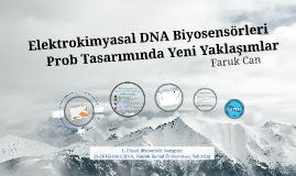 Elektrokimyasal DNA Biyosensörleri Prob Tasarımında Yeni Yaklaşımlar