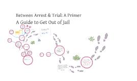Between Arrest and Trial