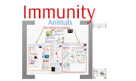 AP Bio- Regulation 6: Immunity
