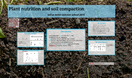 Plant nutrition and soil compaction