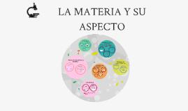 Copy of LA MATERIA Y SU ASPECTO