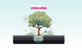 Stichting Maxima, Arpit