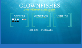 PART 1 - Species - CLOWNFISH - Wilkerson's Lost Chapters