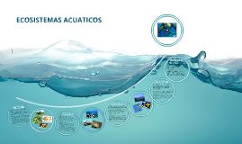 Copy of ECOSISTEMAS ACUATICOS