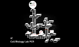 Cell Biology Lab PCR