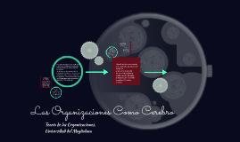 Copy of las organizaciones como cerebro