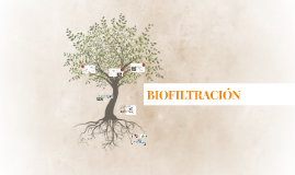 Copy of BIOFILTRACION