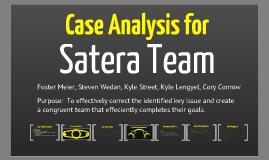 Satera Team Case Analysis