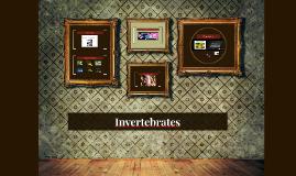 Copy of Invertebrates