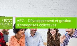 AEC - Développement et gestion d'entreprises collectives