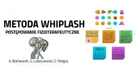 METODA WIPLASH