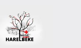 Rode Kruis-Harelbeke AZ 2013