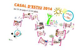 Copy of CASAL d'ESTIU 2013
