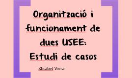 Organització i funcionament de dues USEE: Estudi de casos
