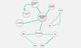 Mapa conceptual del Matrimonio