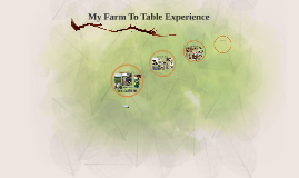 My Farm To Table Experience