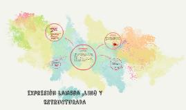 expreción lambda ,LINQ Y ESTRUCTURADA