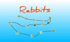 Copy of Rabbits