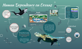 Human Dependence and Human Impact on Oceans