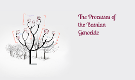 Copy of Bosnian Genocide