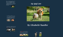 Ag-gag Law