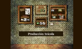 Producción Avicola