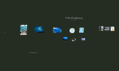 Fish Depletion Final By Shekena Martin Abrar and Joanna