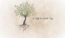 3. 식물의 구조와 기능