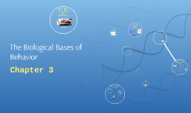 The Biological Bases of Behavior