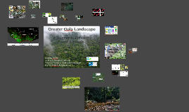 Greater Gola Landscape: the journey
