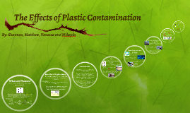 The Effects of Plastic Contamination