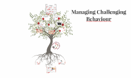 Challenging Behaviour: Research and Strategies