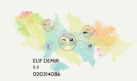 Copy of ELIF DEMIR
