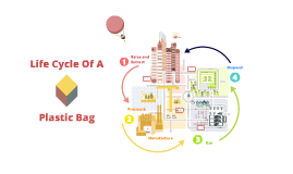 Life Cycle Of A Plastic Bag